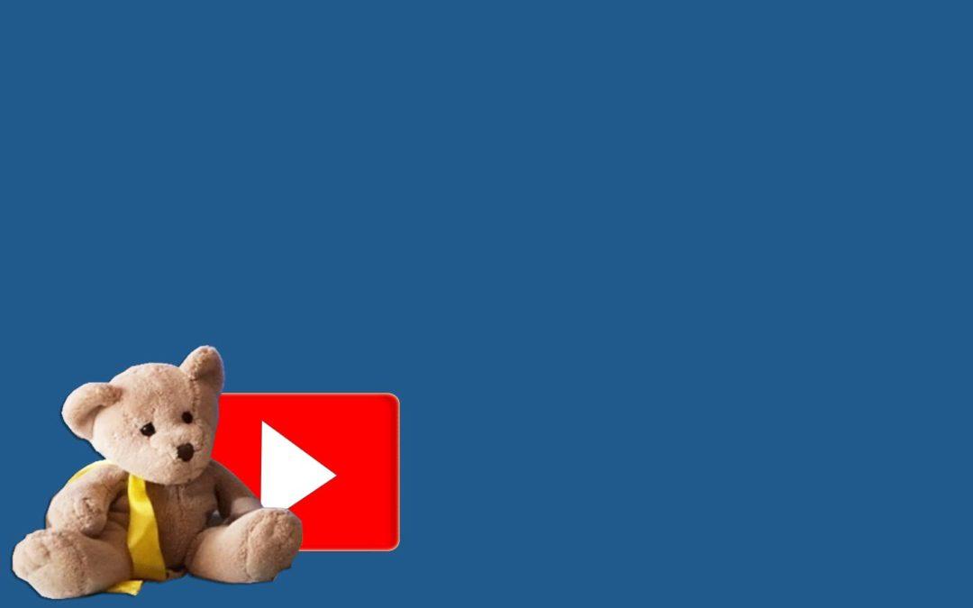 Bärenschule – digitaler Unterricht in der Vorschule