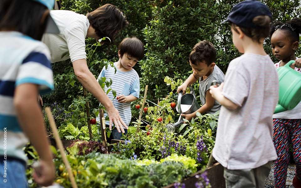 Der Schulgarten – natürlicher Lernspaß mit leckeren Ergebnissen
